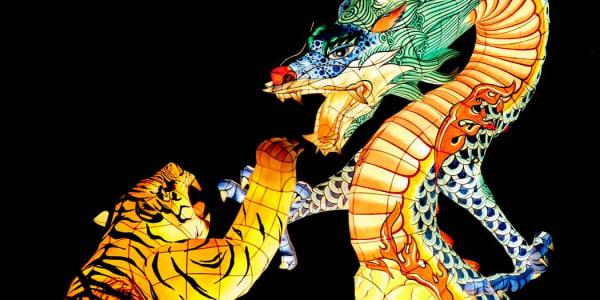 Dragon Tiger: un popular juego de casino en vivo